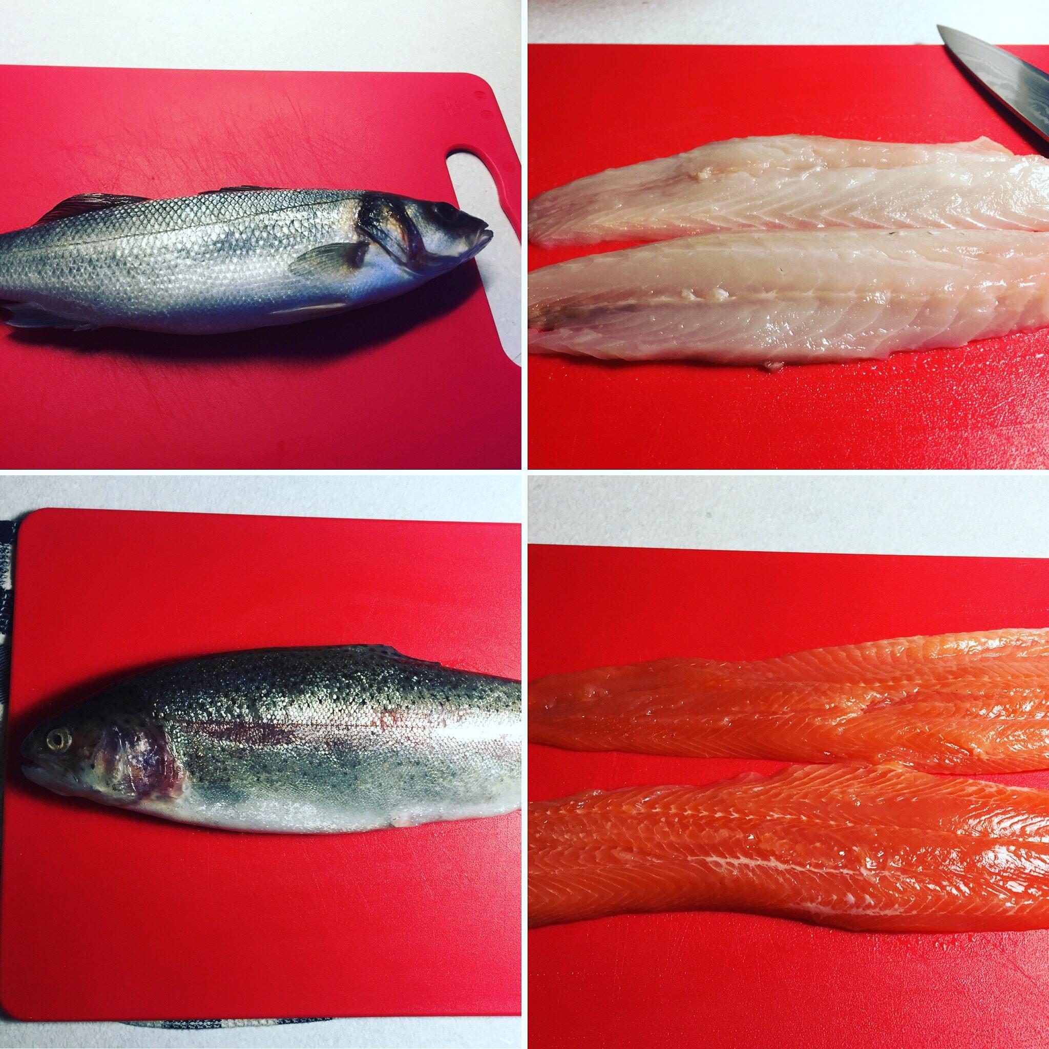 fish filleting at home