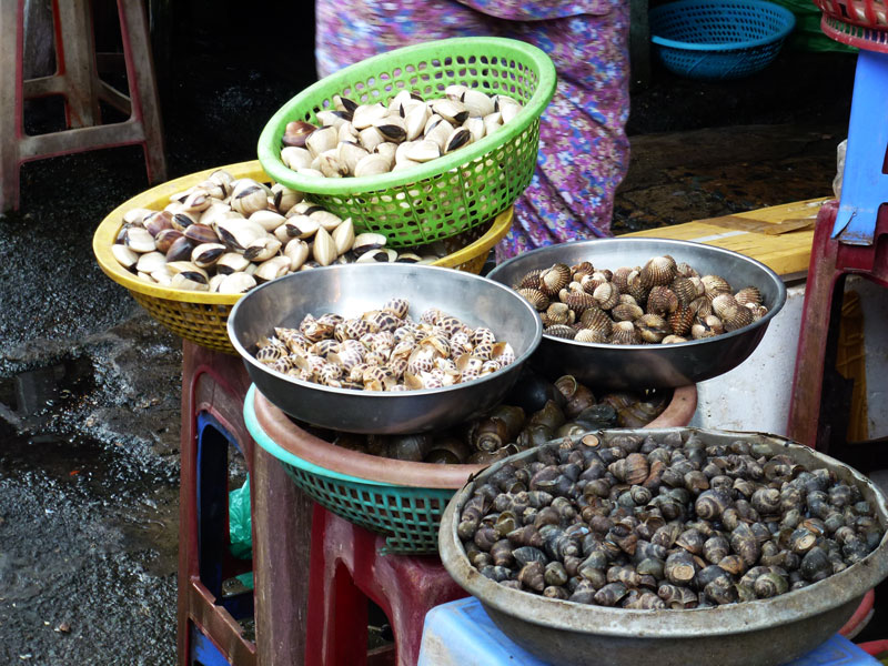 Vietnam shellfish at the market
