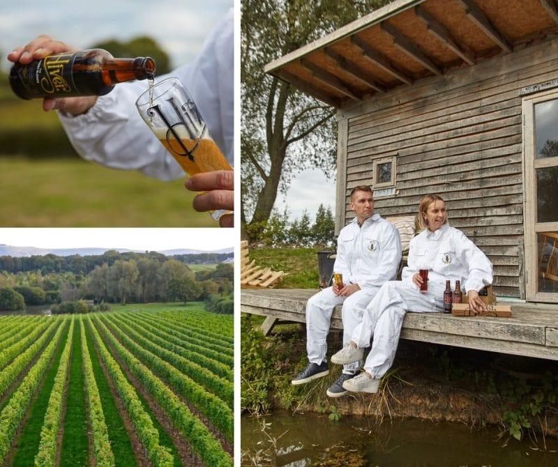 Albourne beekeeping experinece