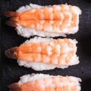 prawn nigiri sushi